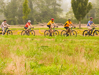 A line of bikers biking through a grassy field